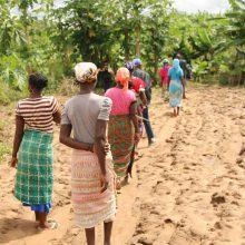 Afrikagrupperna, Angola