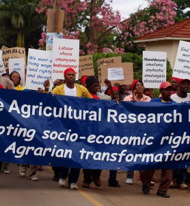 ECARP – support and research for farm workers